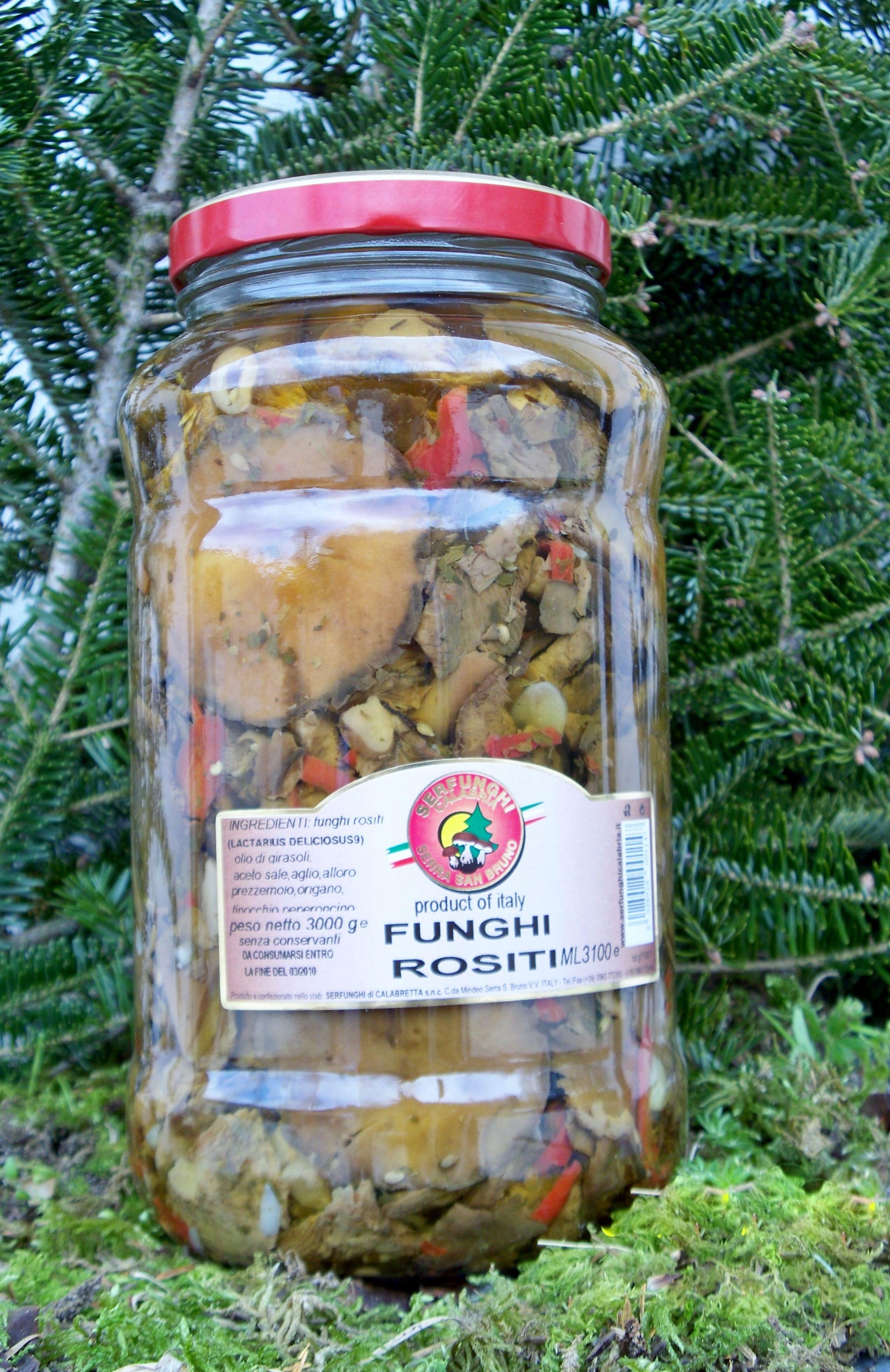 FUNGHI ROSITI ml 3100-314